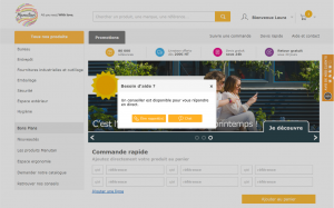 projet portfolio : audit Live Chat